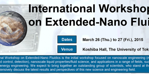 International Workshop on Extended-Nano Fluidics